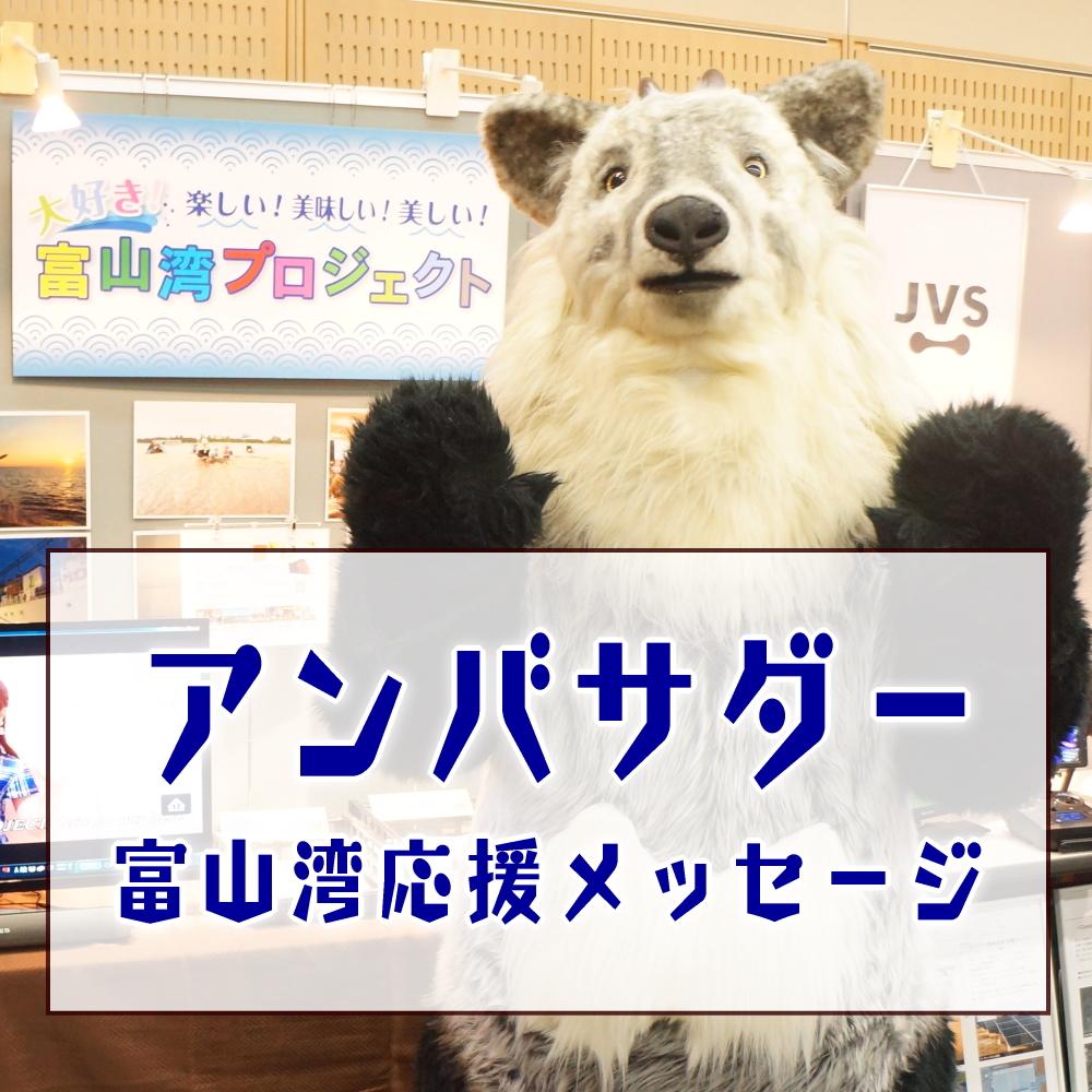 富山湾応援メッセージ